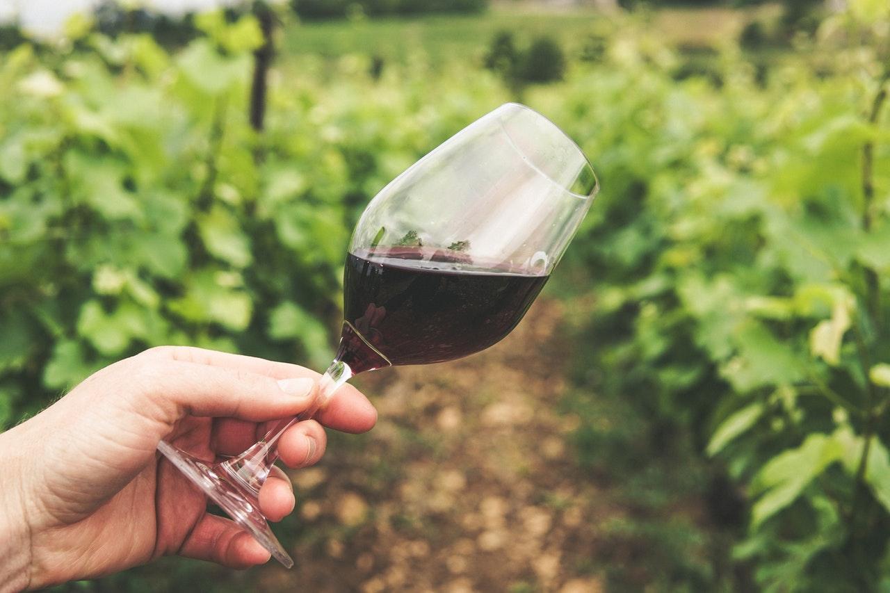 Natural Wine and Trekking